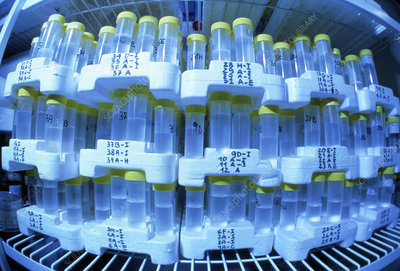 Gene bank: tubes containing all human genes