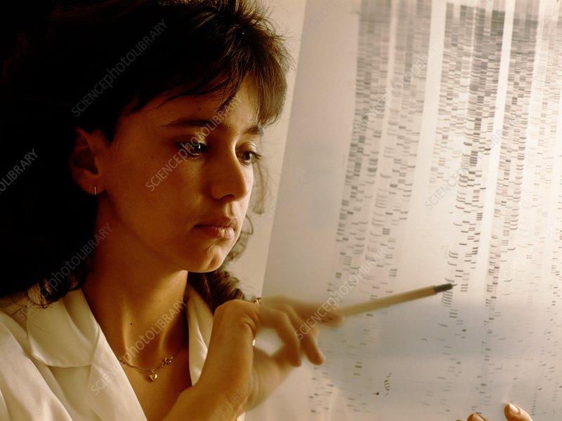 Technician analyses gene sequence of autoradiogram
