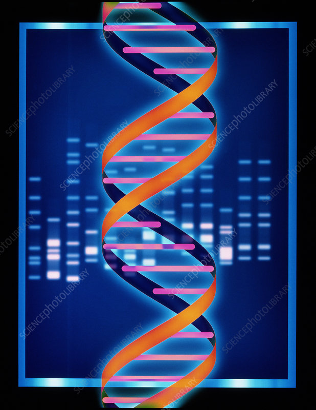 Computer artwork of some DNA with its genetic code