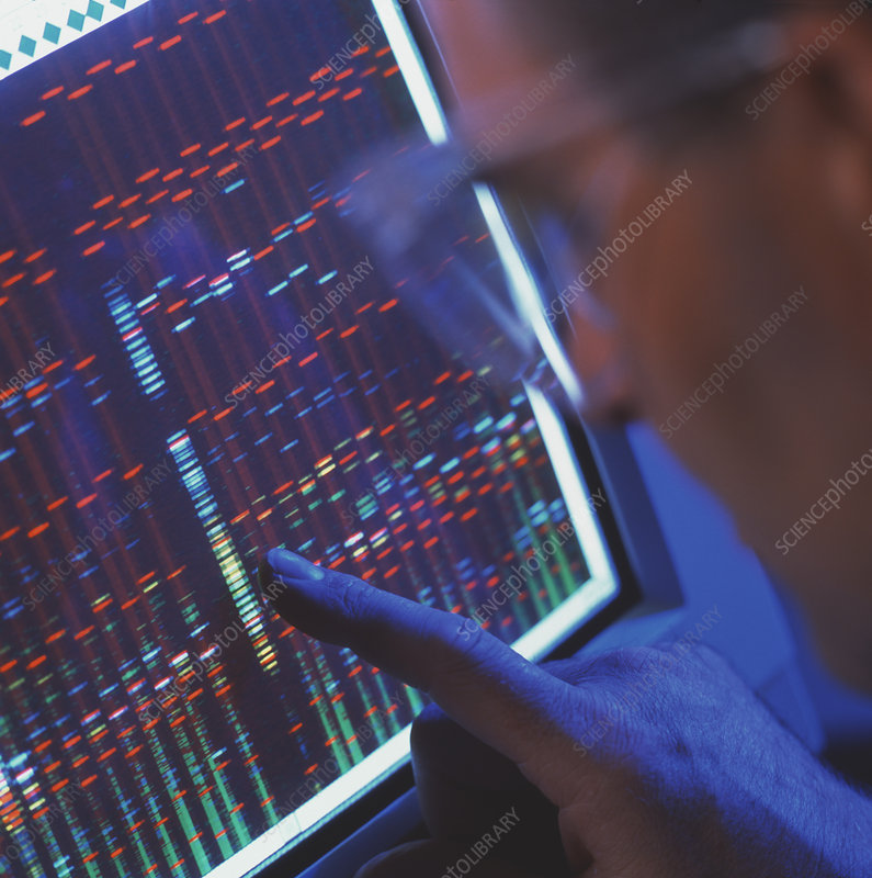 Technician analyses a gene sequence on a computer