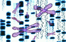 Artwork of DNA sequences and chromosomes