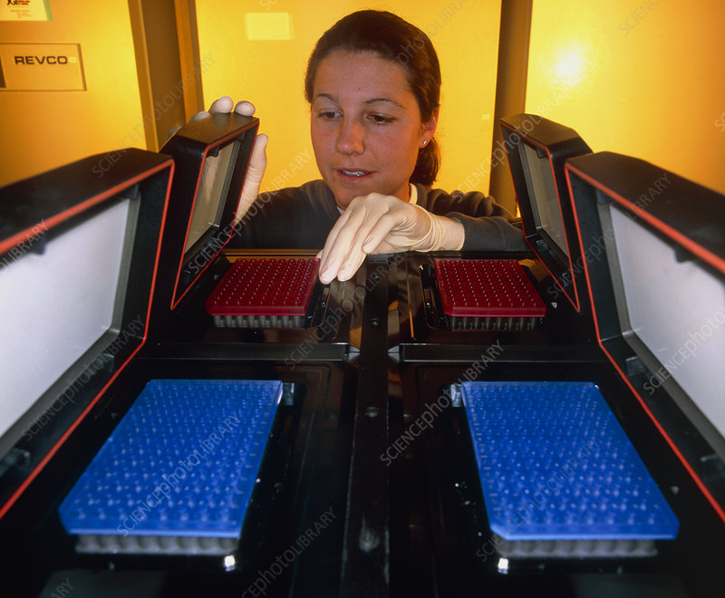 Researcher loading sequencer with human DNA