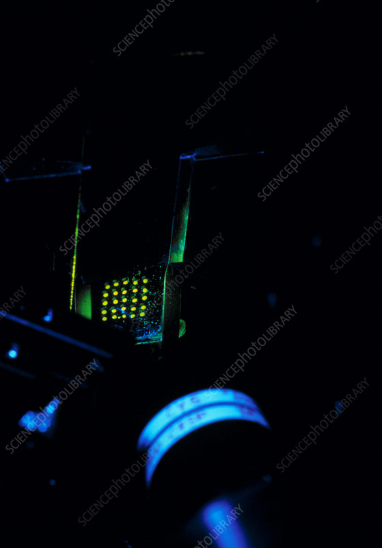 DNA BioChip being scanned by a laser