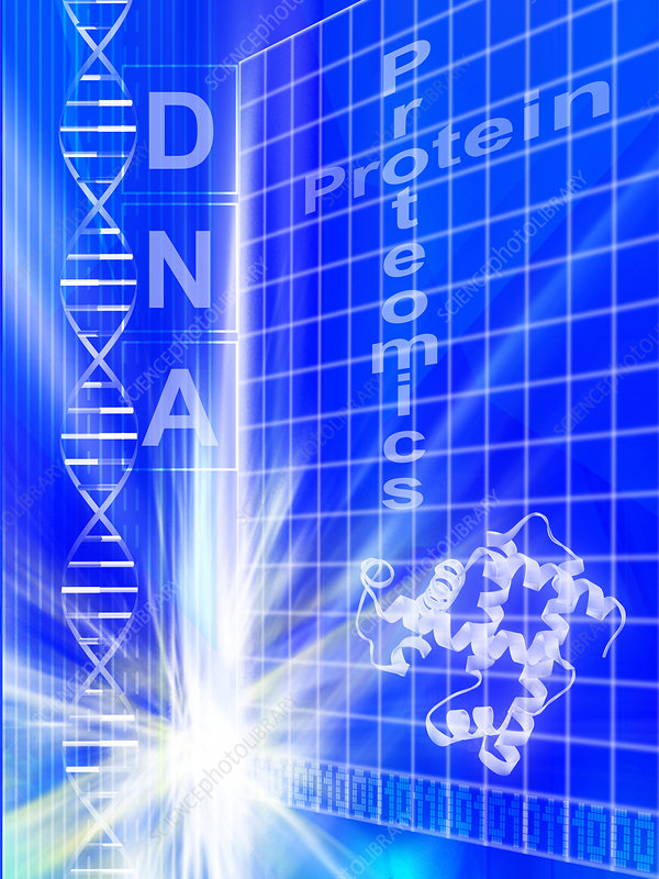 Proteomics research