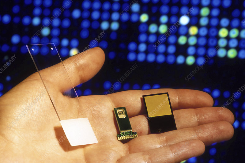 DNA glass microarray and DNA microchips