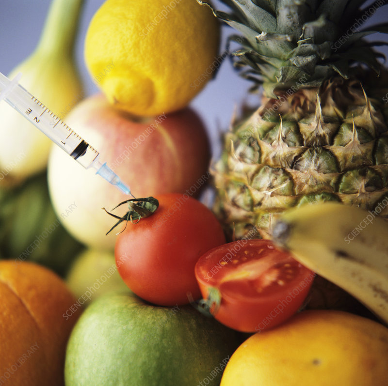 Genetic modification of fruits