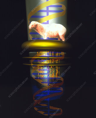 Computer artwork of a cloned sheep in a test tube