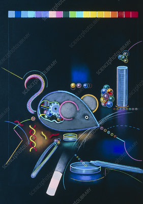Artwork of a genetically-engineered mouse
