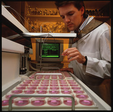 Technician with amniotic cells cultures