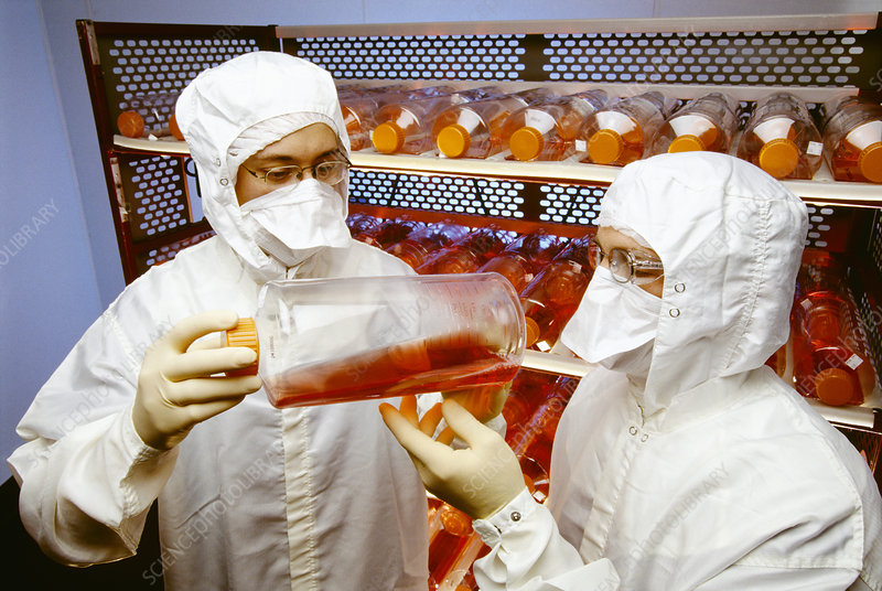Scientists studying virus samples