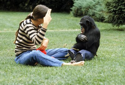 Joyce Butler with Nim the chimpanzee
