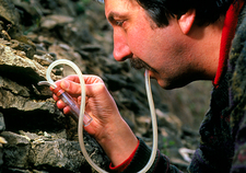 Ant research: Dr Nigel Franks uses pooter device