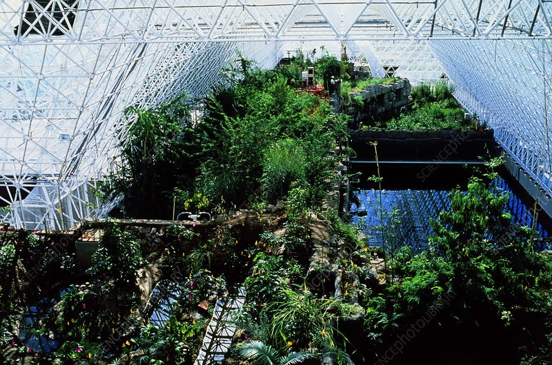 Rain forest biome of Biosphere Project