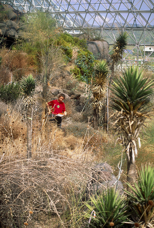 Plant survey in Biosphere 2 desert biome