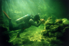 Marine biologist diving in Biosphere 2 'ocean'
