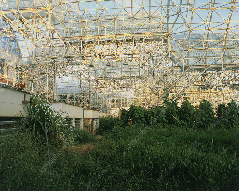 Internal view of Biosphere 2, an ecology experimnt