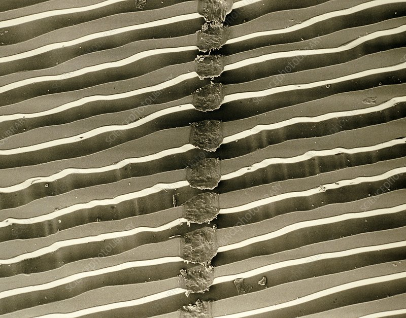 Sem Of Surface Grooves Of Scratched Lp Record Stock