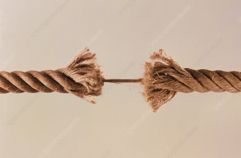 Two lengths of rope conncted only by a last thread