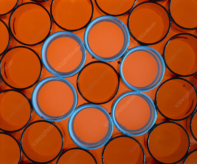 Copper and plastic pipes