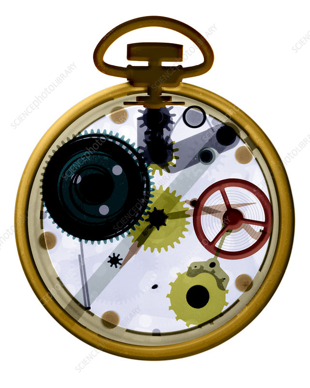 X-ray of a pocket watch