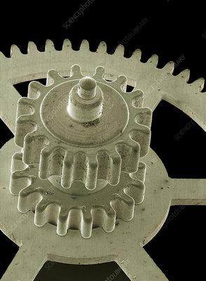 Watch gears, SEM