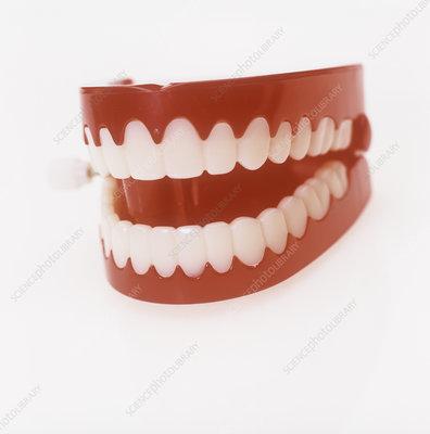 Toy teeth