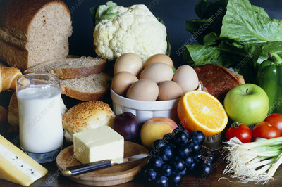 Foods containing fat, carbohydrate and protein.