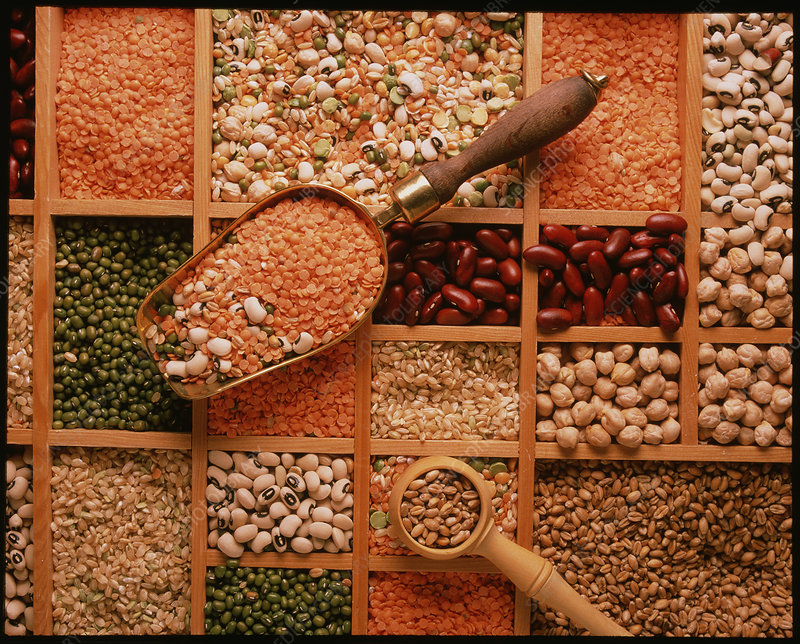 Store of various grains and pulses
