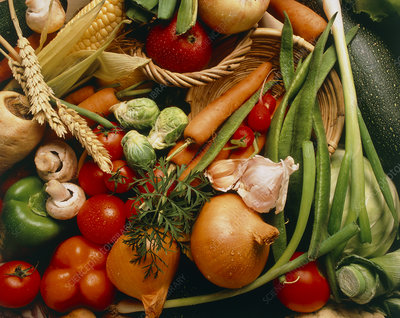 Assortment of salad vegetables and fruits
