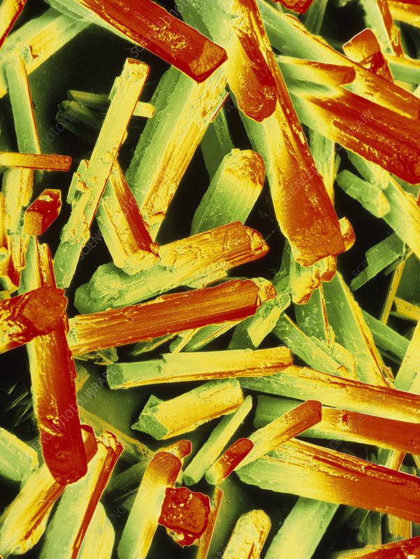 False-colour SEM of monosodium glutamate
