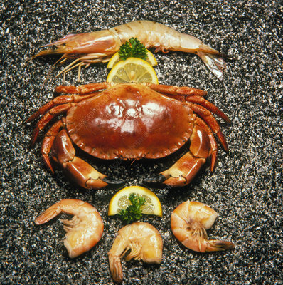 Shellfish; crab and prawns with lemon garnish.