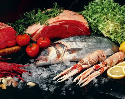 A collection of food rich in protein: fish & meat