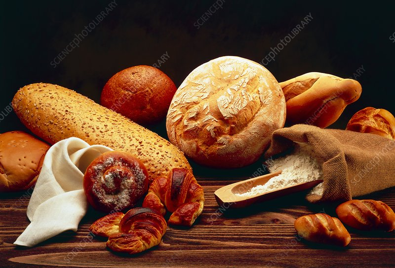 A collection of different types of bread