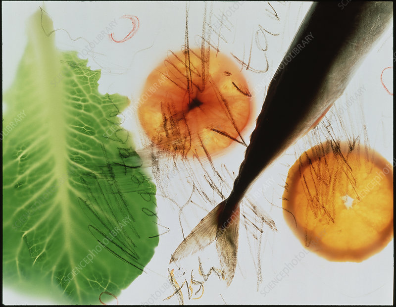 Vitamins, abstract of fish, oranges and lettuce