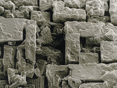SEM of Maldon sea salt