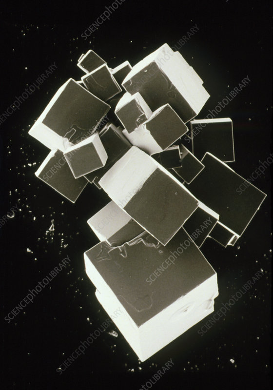 SEM of common salt