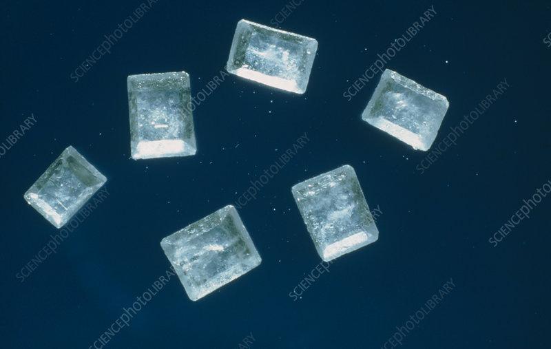 Light micrograph of sugar crystals