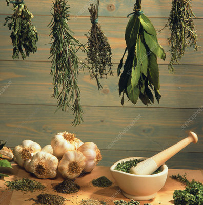 Dried herbs with garlic, pestle & mortar