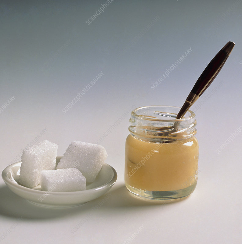 Sweeteners: cubes of white sugar and honey