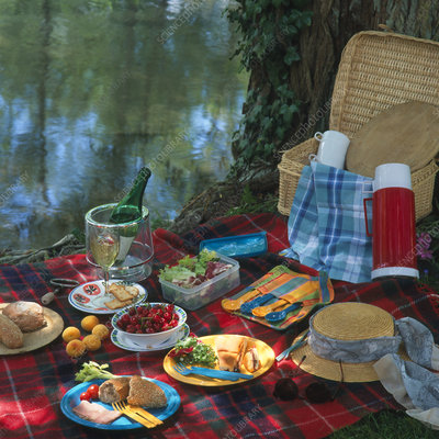 Picnic food by a river