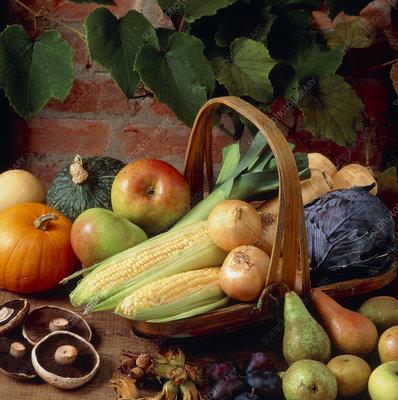 Autumn harvest vegetable selection