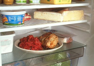 Cooked & raw meat stored on same plate in fridge