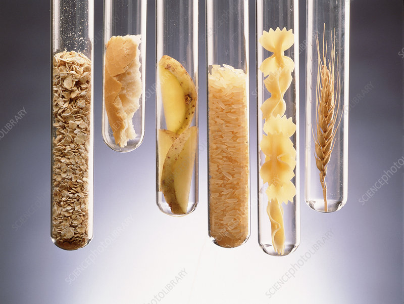 Carbohydrate-rich foods presented in test tubes