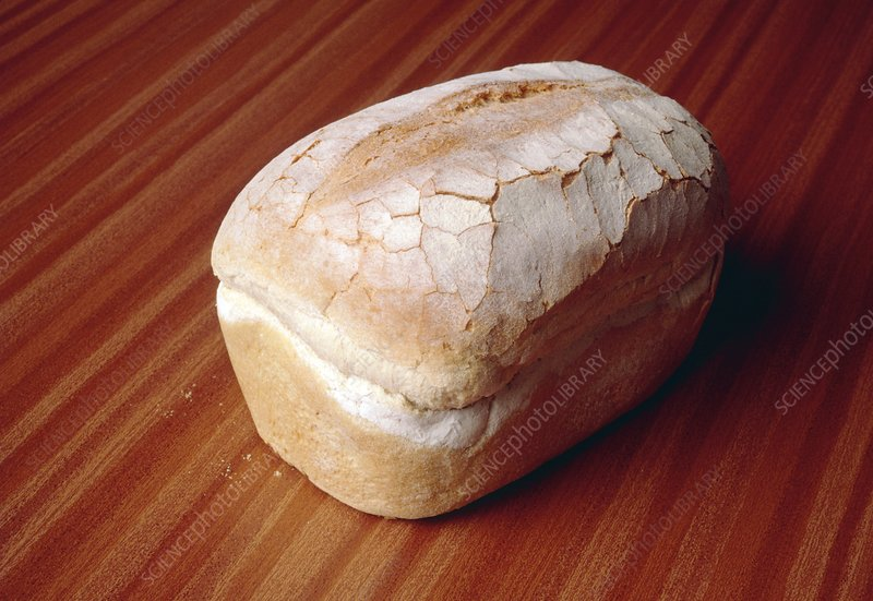 Traditional loaf of white bread