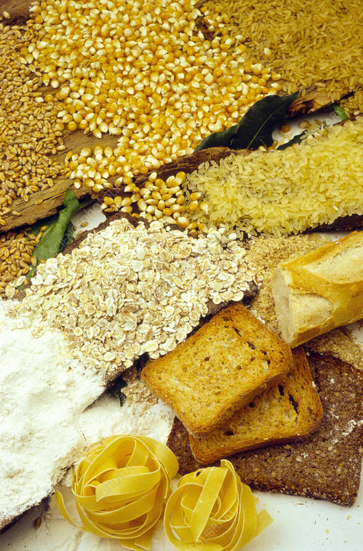 Selection of foods high in fibre and carbohydrate