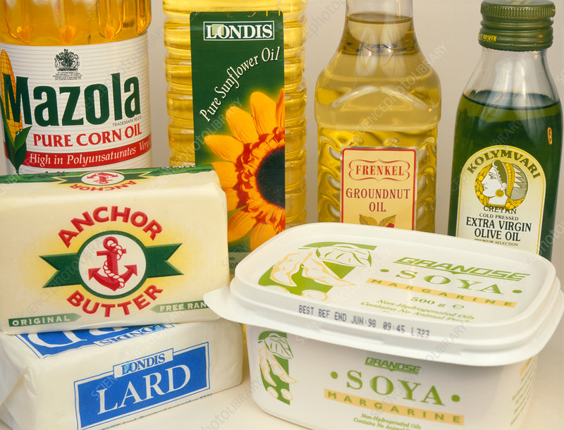 Assortment of dietary oils and fats