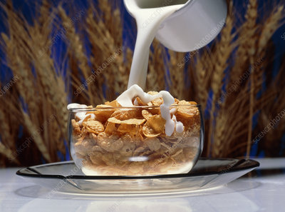 Milk being poured into a bowl of cornflakes cereal