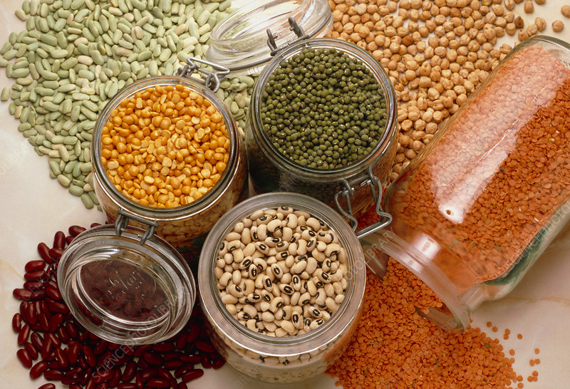 View of an assortment of beans and pulses