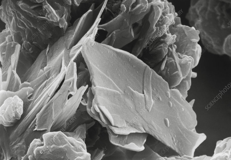 Scanning electron micrograph of cocoa powder