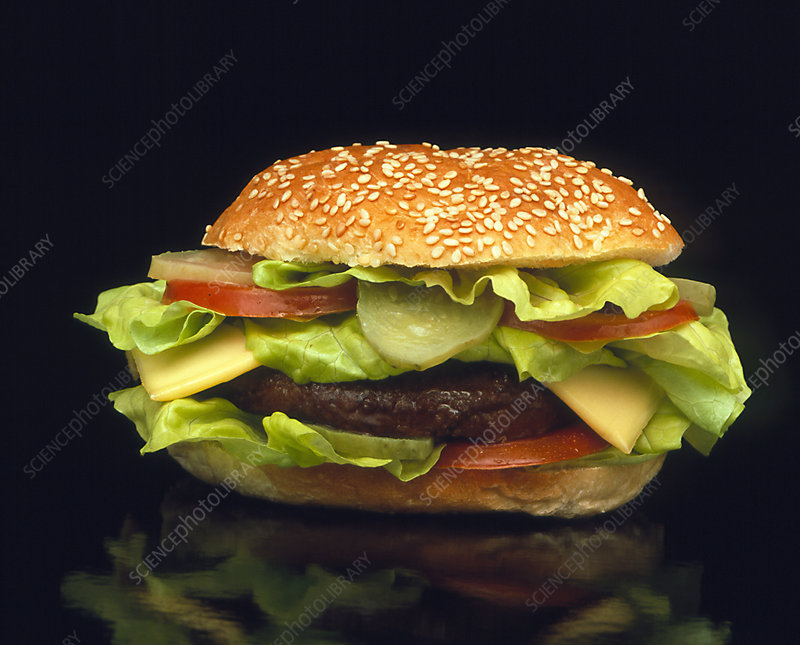 Cheeseburger with lettuce, tomatoes and gherkins